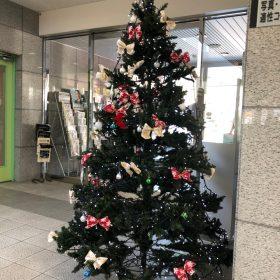 クリスマスツリー登場•(◍•ᴗ•◍)