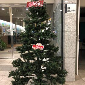 Kenji思い出の木がリニューアル!